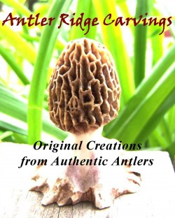 Antler Ridge Carvings
