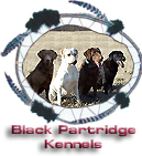 Black Partridge Kennels